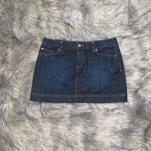 Lily Pulizter Jean Skirt